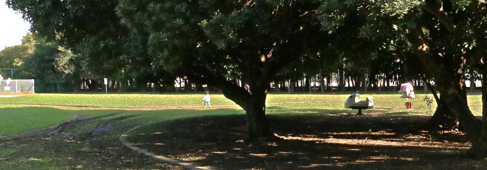 舞浜エリアの公園